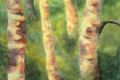 Betulle / Birches - Olio su tela / oil on canvas 76 x 102 cm. Euro 3000